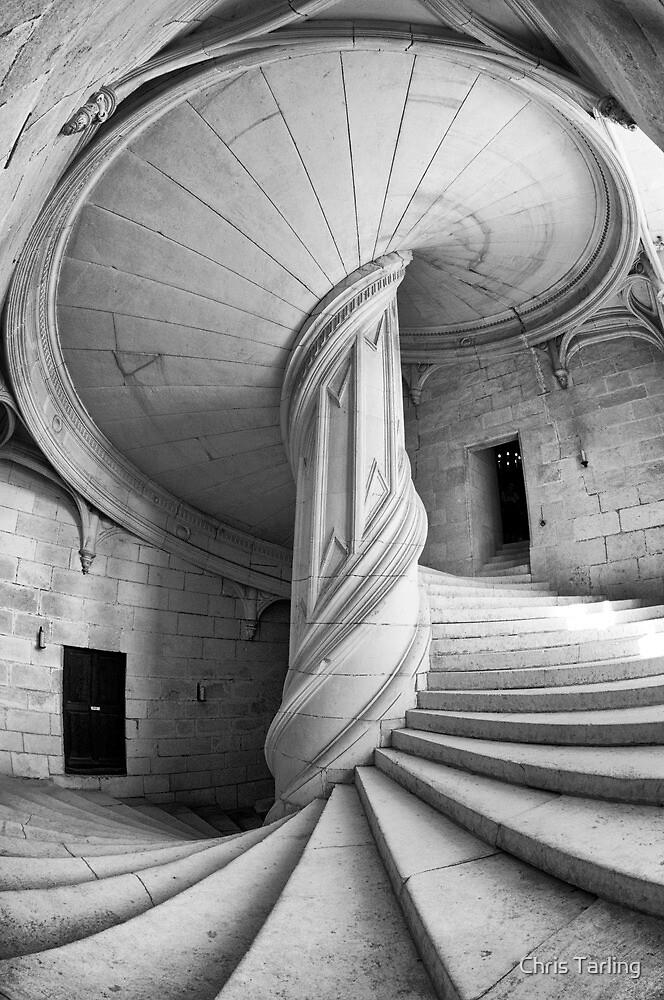 Chateau de la Rochefoucauld Stairway in B&W by Chris Tarling