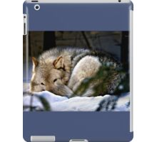 Snuggled Up iPad Case/Skin