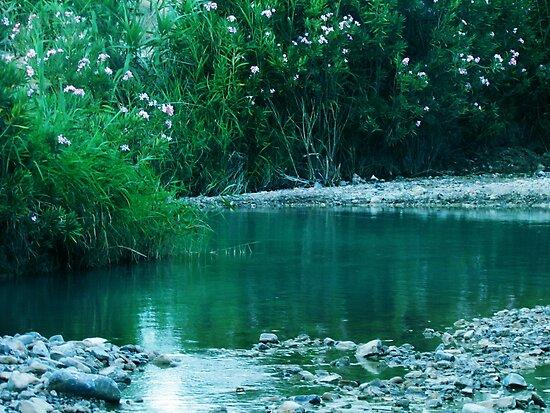 Tiny Lake by Omar Dakhane
