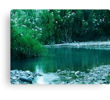Tiny Lake Canvas Print