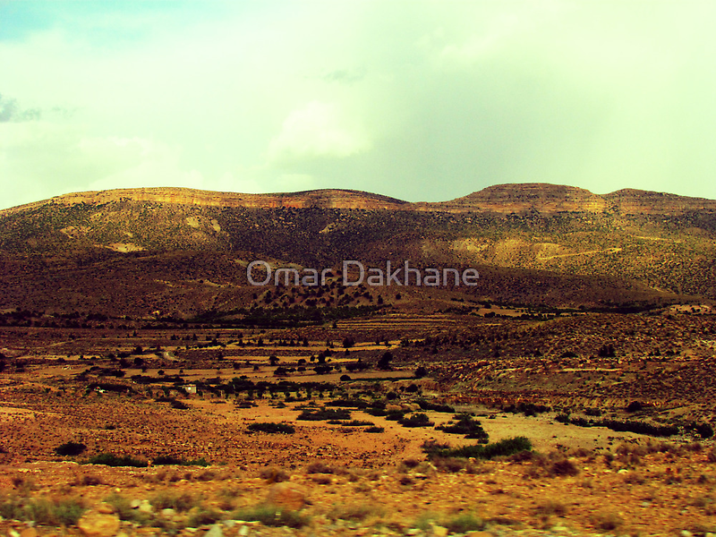 Hammam Heights by Omar Dakhane