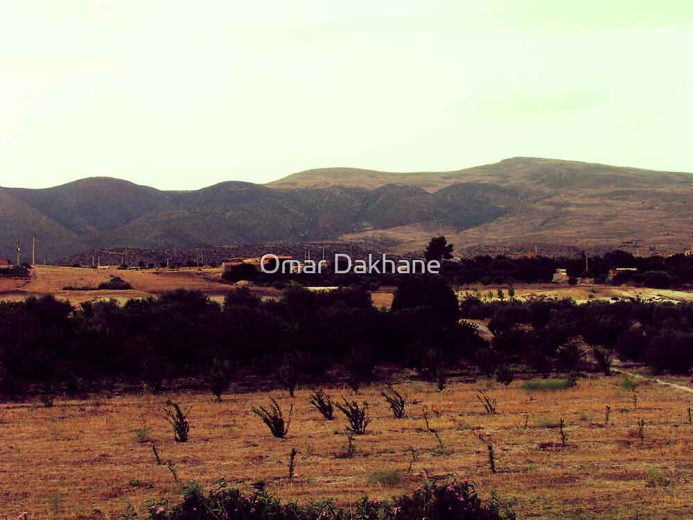 Summer Day by Omar Dakhane