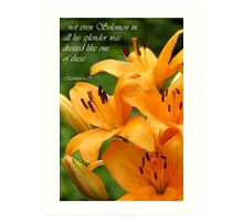 Lilies of the Field (Card) Art Print