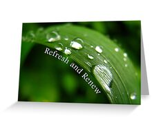 Refresh and Renew (Card) Greeting Card