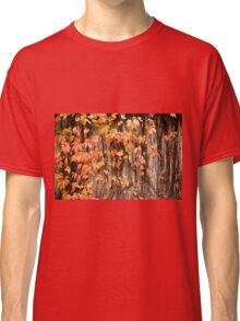 Vitaceae family ivy wall Classic T-Shirt