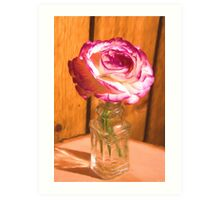 Country White And Purple Rose Art Print