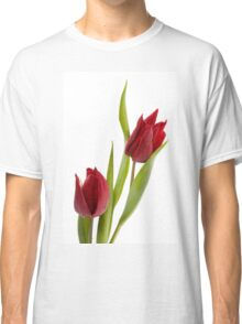 Two red tulip heads  Classic T-Shirt
