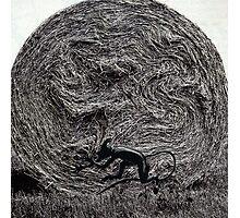 haystack devil Photographic Print