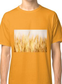 Golden cereal ears grow  Classic T-Shirt