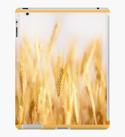 Golden cereal ears grow  iPad Case/Skin