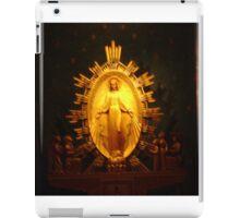 Miraculous Mary Metal  iPad Case/Skin