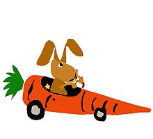 Hilarious Bunny Rabbit Driving Carrot Car by naturesfancy