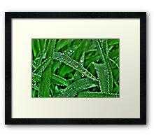 Leaf Diamonds Framed Print