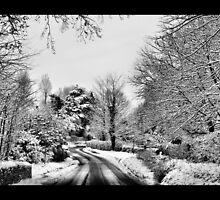 Winter Roads by samwisewoahzay