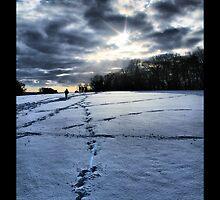 Snow Blue by samwisewoahzay