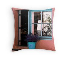 Shirt in the Window Throw Pillow