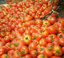 Mmmm Mmmmm Tomatoes by AuntieBarbie