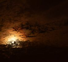 Fire Moon by Rene  Triay