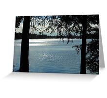 Sparkles On Willow Beach Lake Greeting Card