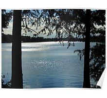 Sparkles On Willow Beach Lake Poster