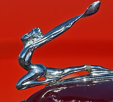 1934 Buick Series 50 Hood Ornament by Jill Reger