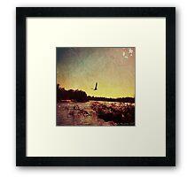 Seagull at Sunset Framed Print