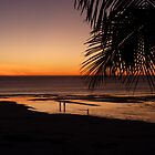 Broome Beach at  Sunset  by Virginia  McGowan