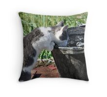 Water Break! Throw Pillow