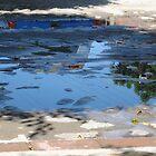 Oaxaca after the rain by freger
