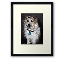 Dougie - Pet Portrait Framed Print