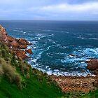 Cape Woolamai by Stephen Ruane