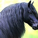 friesian horse by Cazzie Cathcart