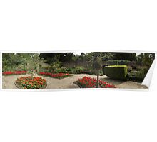 red flowers -(120811c)- digital panorama photo Poster