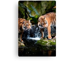 I let you choose first Canvas Print