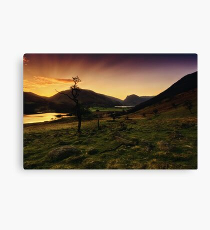 Photoshop, Filters & Layers Canvas Print