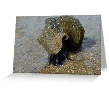 Slimey Sammy the Slippery Sea Snail Greeting Card