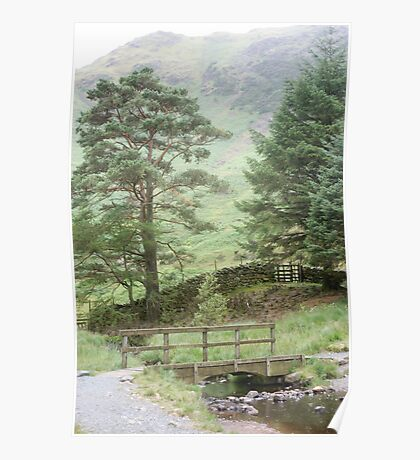 Behind Blea Tarn - the Lake District Poster