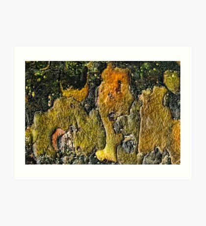 Landscape Distraction Art Print
