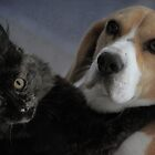 Best friends .  .really and truly. by yolanda