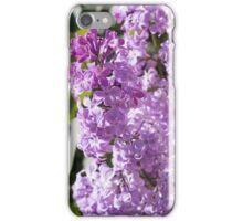 Lilac Bush iPhone Case/Skin