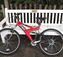 my bike/chair/plaque -(120811)- digital photo by paulramnora
