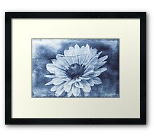 If Daisies Wore Blue Jeans Framed Print