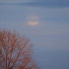 Moon Rise , Sun Set by wanderingtrucki