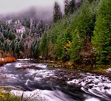 Quartzville Creek Snow by Charles & Patricia   Harkins ~ Picture Oregon