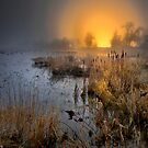 Fog Over The Duck Pond by Charles &amp; Patricia   Harkins ~ Picture Oregon
