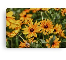 Flowers in HDR Canvas Print