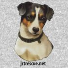JRT Rufus Tee Shirt for kids clothes by JRTrescue