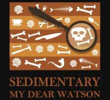 Sedimentary Watson! Kids Clothes