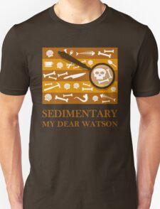 Sedimentary Watson! T-Shirt