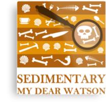 Sedimentary Watson! Metal Print